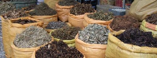 plantes-aroma-medicinales-maroc.jpg