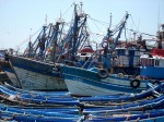 Essaouira-port-fellahtrade.JPG