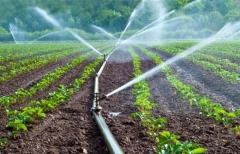 irrigation-agriculture-maroc.jpg