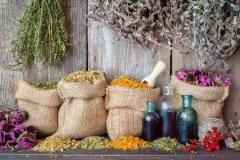 plantes-medicinales.jpg